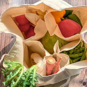 Shopping-Bags-1
